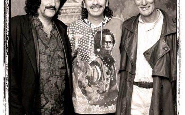Carmine – Santana – Ginger