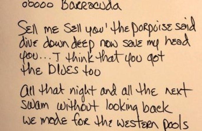Ann Wilson – Barracuda